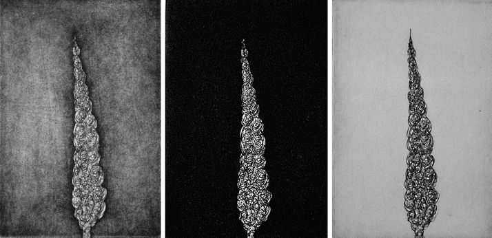cypess 35 threeptych etching & aquatint, 2007, 10*15 cm, each one