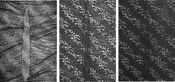 cypess 25 threeptych, photo-etching & aquatint, 2007, 25*35 cm each one