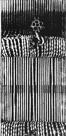 embedded 3 photo-etching & aquatint, 1995, 30*60 cm