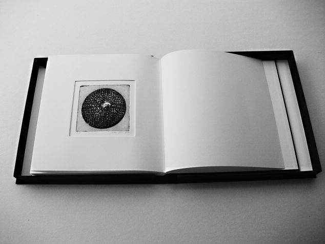 book B 3 ספר קופסא, בתוכם  12 תחריטים שהם 12 חרוזים לשרשרת שהושארה שם