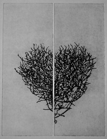 heart 12 photo etching, 2014, 30*40 cm
